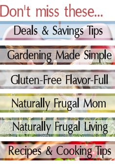 Frugal, Eco-Friendly, Homemade Soaps and Cleaners | Premeditated Leftovers