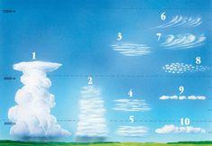 Was Wolken über das Wetter wissen