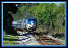 10. Amtrak's Crescent Train; view passing through Lumberton, MS