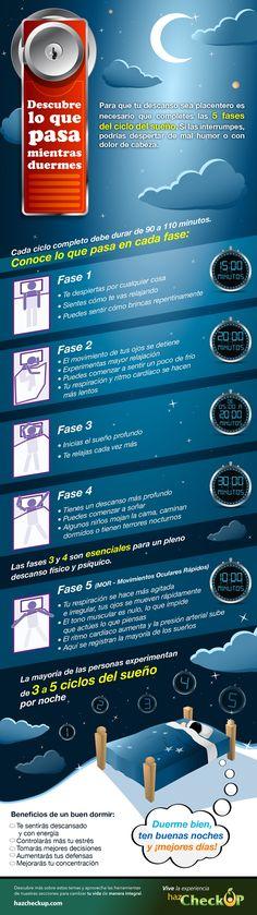 DESCUBRE LO QUE PASA MIENTRAS DUERMES Ciclos y fases del sueño | Importancia de dormir #salud #health #cuerpo #sueño #sleep #dormir #rest #fases #descanzo #infografía #infografía #infografia #infographics #infography