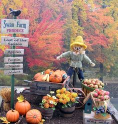 Pumpkin Patch ideas - link doesn't work, but isn't this adorable? Produce Stand, Produce Displays, Fall Displays, Autumn Display, Harvest Time, Fall Harvest, Harvest Season, Fall Halloween, Halloween Scene