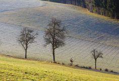 """""""Ein Winter, der ein Frühling war. Bei Bad Zell im Naturpark Mühlviertel"""" (Bild: Susanna Witte) Bad, Austria, Country Roads, Mountains, Nature, Travel, Pictures, Viajes, Naturaleza"""