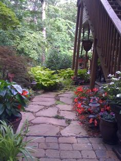 Path to covered patio