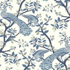 York Wall Coverings York Wallcoverings x 27 Plume Wallpaper Roll Peacock Wallpaper, Chinoiserie Wallpaper, Botanical Wallpaper, Bird Wallpaper, Wallpaper Roll, Sunflower Wallpaper, Friends Wallpaper, White Wallpaper, Hand Embroidery