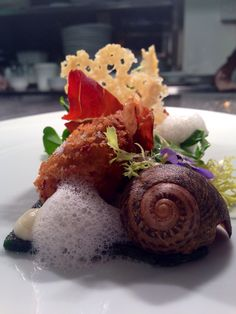 'The snail'