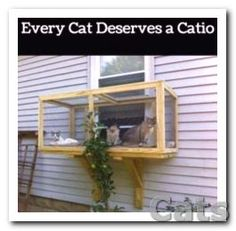 A screened in patio for #CATS....spotted this great idea.
