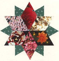 Image detail for -Scrapbook Quilting: The Diamond Double Star Samples