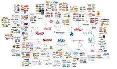 http://static7.businessinsider.com/image/4f9805106bb3f7d331000017-960/reddit-chart-illusion-choice.png