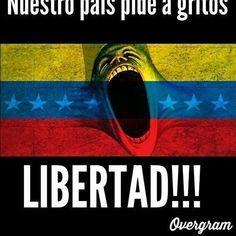 Resultado de imagen para imagenes de resistencia en venezuela