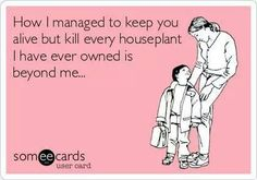 I have crappy landscaping in the front but spent all night tonight with my kids, so true!