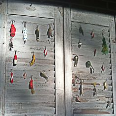Vintage fishing lures hanging on 100 year old shutters. Vintage fishing lures hanging on 100 year old shutters. Vintage Fishing Lures, Fishing Gifts, Fishing Stuff, Gone Fishing, Fishing Tackle, Fishing Bedroom, Old Shutters, Green Shutters, Antiques