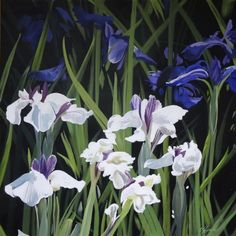 ARTFINDER: Iris 2015 by joseph lynch - I spotted these  Iris on my recent visit to Kent,I particularly liked the contrast between the colours of the flowers the green stems and the dark background...