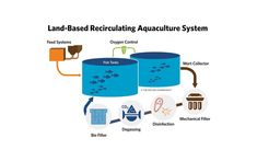 Prawn Farming, Fish Farming, Aqua Farm, Alternative Fuel, Aquaponics Fish, Vertical Farming, Latest Technology, Fish Tank, Agriculture