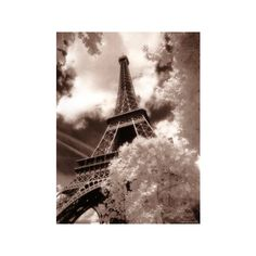 Eiffel Tower, Paris, France Photographic Wall Art Print ($35) ❤ liked on Polyvore featuring home, home decor, wall art, mounted wall art, interior wall decor, home wall decor and parisian wall art