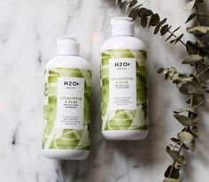 H2O+ Beauty   Body Collection   Our Eucalyptus & Aloe Revitalizing Shampoo and Conditioner is infused with Aloe, Vitamin B & E and will leave your hair with a gorgeous shine and feeling oh so smooth! 🍃🌿💚