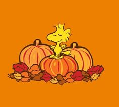 Peanuts / Snoopy fall pictures