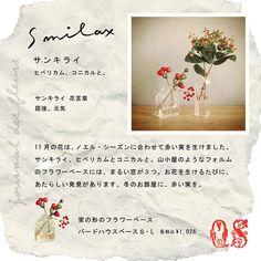 jounal des fleurs | コラム | キャトル・セゾン