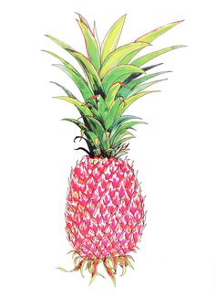 I love a pineapple - this one by Andy MacGregor is super fabulous!