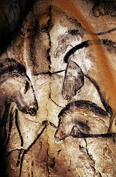"Beautiful drawing of horses facing one another in Chauvet Cave in France. Art dates back 30,000 to 33,000 years. Seeing their artistry in the film ""Cave of Forgotten Dreams"" by Wernor Herzog is as close as one can get to the art as the caves are not open to the public."