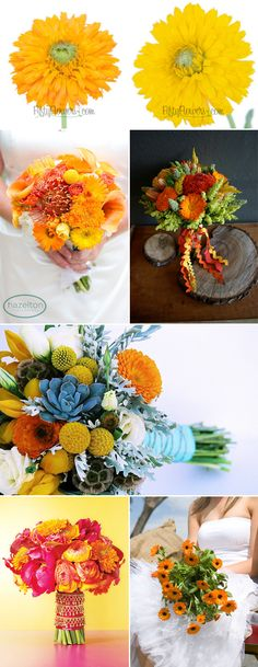 One of the October Birth Month Flowers is the Calendula! Perfect for Fall as it… Flowers For You, Fall Flowers, Fresh Flowers, October Birth Flowers, Birth Month Flowers, Fall Wedding, Wedding Ideas, Flower Identification, Calendula