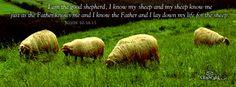 My Journey from Mormonism to Jesus: Prophecies of Joseph Smith  This ones short