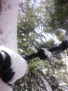 Χιονι