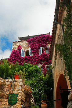 Flores na Rue ~ in the beautiful village of Eze, in the south of France