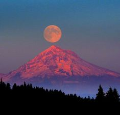 """Amazing Full moon rising over Mount Hood in Oregon. Mt Hood Oregon, Oregon Coast, Oregon Usa, Portland Oregon, Destinations, Shoot The Moon, Mount Hood, Blood Moon, All Nature"