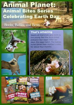 Celebrate Earth Day with the Animal Planet Animal Bites series of books. Learn about baby animals and animals on the move. #earthday #animalplanet