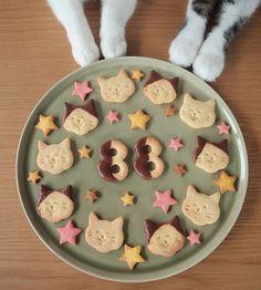 #宇野クッキー  #食卓にネコ の表紙と、お母はんの好きなカテゴリーの「おやつ・デザート」の1枚目に使われてる、お母はんオリジナルの八おこめクッキーです❤︎ たくさんの方の所にどんどん本が届いているようなので、本で使われなかったお気に入りの写真もちょこちょこアップしていきま〜す♩ 中でもクッキーシリーズがお気に入りで写真もいっぱい撮ってもらった❤︎ 皆様、嬉しいコメントやタグ付けありがとうございます❤︎ ゆっくりですが順番にお返事させて下さいね〜♩ もし気に入って買って頂けたら『 #八おこめ本 』☜のタグを付けて、お友達のニャンコ好きさんに紹介して頂けたら嬉しいです☆(タグを使ってもらえたら、私も本を手に取ってくれた方の所に見に行けるので♪) たくさんの方の手に取って頂けたら嬉しいです ※タグ付けして下さる方で非公開にされている方、せっかくタグ付けして頂いたのにこちらから見れなくてお礼のコメントができなくてごめんなさい。 #ねこクッキー #ニコニコクッキー #顔クッキー #バカリズムに似てる #クッキー #八おこめ #ねこ部 #cat #ねこ #八おこめ食べ物