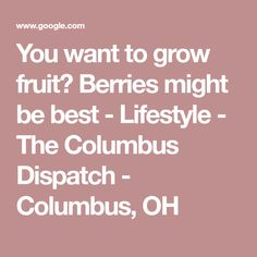 You want to grow fruit? Berries might be best - Lifestyle - The Columbus Dispatch - Columbus, OH