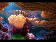 Finding Nemo DVD Menu - YouTube