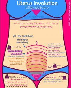Pink or Blue Care – Educating, supporting and empowering woman and their journey through pregnancy! Postpartum Nursing, Newborn Nursing, Ob Nursing, Maternity Nursing, Newborn Care, Nursing Assessment, Pharmacology Nursing, Nursing School Notes, Nursing Schools