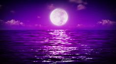moonlight and sea - Google Search