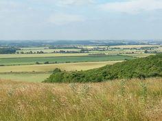 Barton Hills, Bedfordshire
