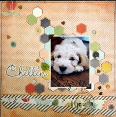 Chillin layout was made using the new Fancy Pants Designs Happy Go Lucky Collection - Scrapbook.com