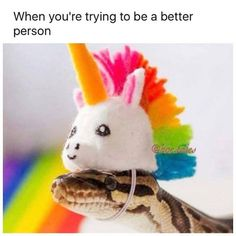 "This reminds me of the time my friend's boyfriend called me a ""rattlesnake on steroids"" cause I was so mean to him. I just laughed at him cause that's an understatement. XD"