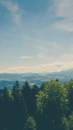 Mountain Valley Pine Canopy Vintage #iPhone #6 #wallpaper