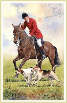 Tally-ho - Horse and Hounds picture