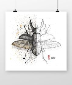 That happens when you combine the late coffee and your interests in Entomology. Lucanus Cervus - best-known species of stag beetle (family Lucanidae). S Tattoo, Insects, Moose Art, Ink, Drawings, Handmade Gifts, Animals, Inspiration, Etsy