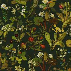 HERBARIUM Wallpaper - Forest-Green