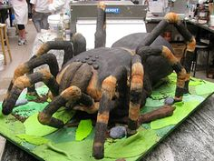 Arran wants a spider cake for his birthday - not sure it will be up to this standard!!