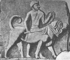 Cane Corso's History -releif from temple DicasaMarziali  Ancient Borsippa (Birs Nimrud) The ancient city of Borsippa is located 12 miles south of the city-state Babylon in Hillah Province of Central Iraq. An ancient religious center it was the site of the Ezida Temple dedicated to Marduk -- the national god of the Old Babylonian Empir