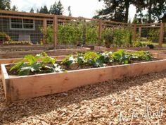 wohnluft.de   diy: ein hochbeet entsteht   garden ideas, Garten und erstellen