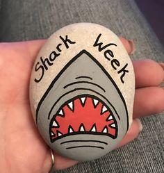 Shark week rock