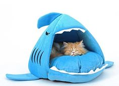Sky-Blue Shark Bed for Small Cat Dog Cave Bed Removable Cushion, Waterproof Bottom Most Lovely Pet House Gift for Pet * Click image to review more details.