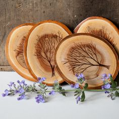 Set of 4 Rustic Modern Wood Slice Coasters with by ForageWorkshop, $39.00