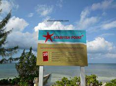 Starfish beach Cayman Islands