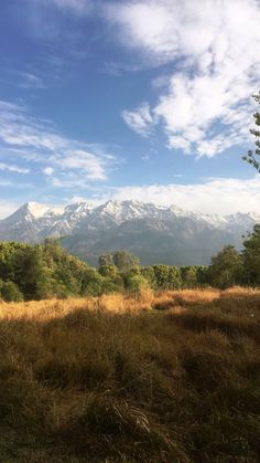 Beautiful views of the Himalayas from Palampur in northern India