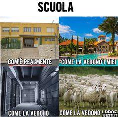 Non possiamo negarlo 🤣🤣🤣 All Meme, Me Too Meme, Paros, Funny Images, Funny Photos, Funny Facts, Funny Jokes, Verona, Italian Memes